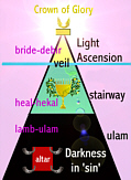 Patterns by Betty Rhodes